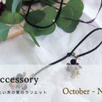 ナッツアクセサリー教室 10月「秋に身に着けたい木の実のラリエット」